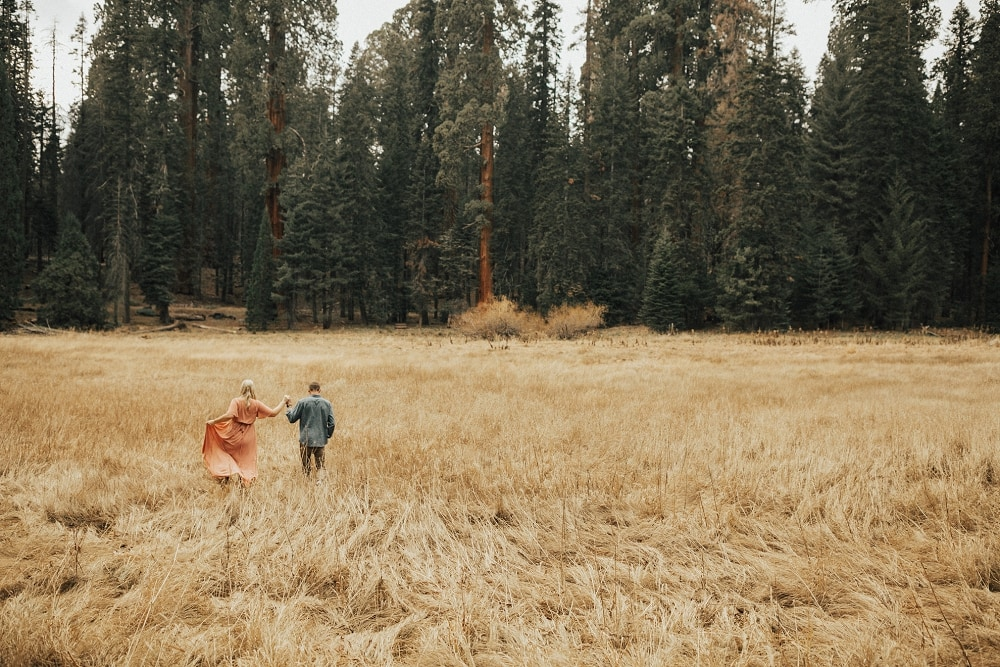 sequoia national park engagement session