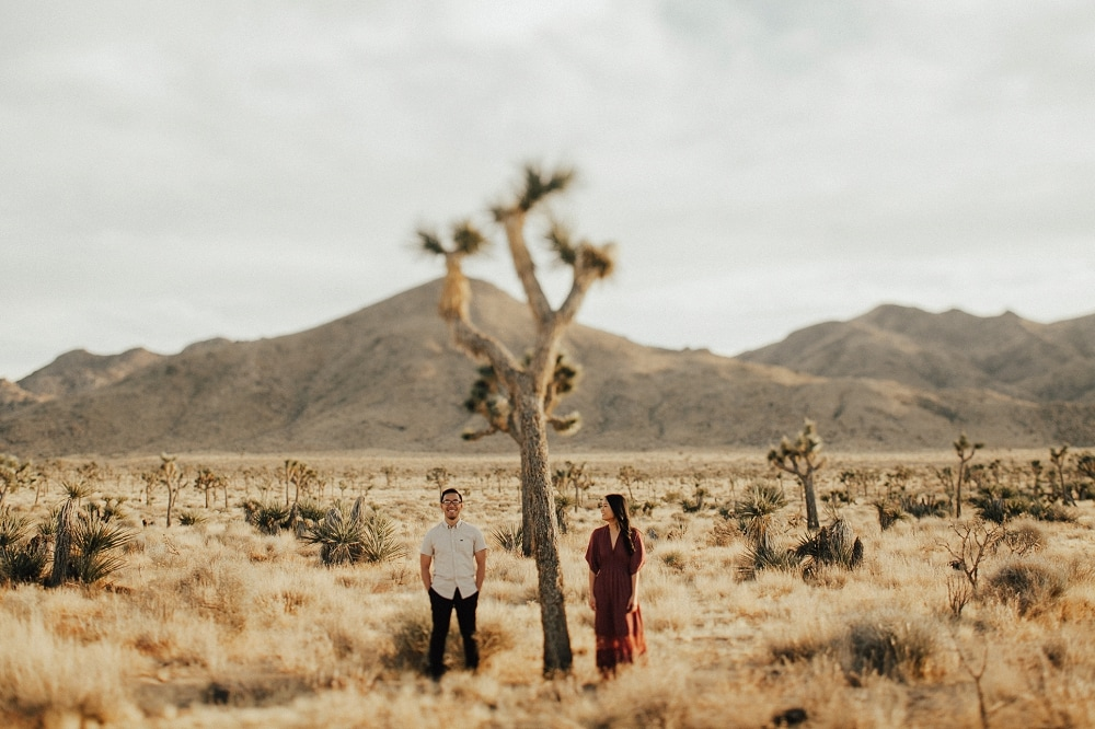 joshua tree engagement session in december