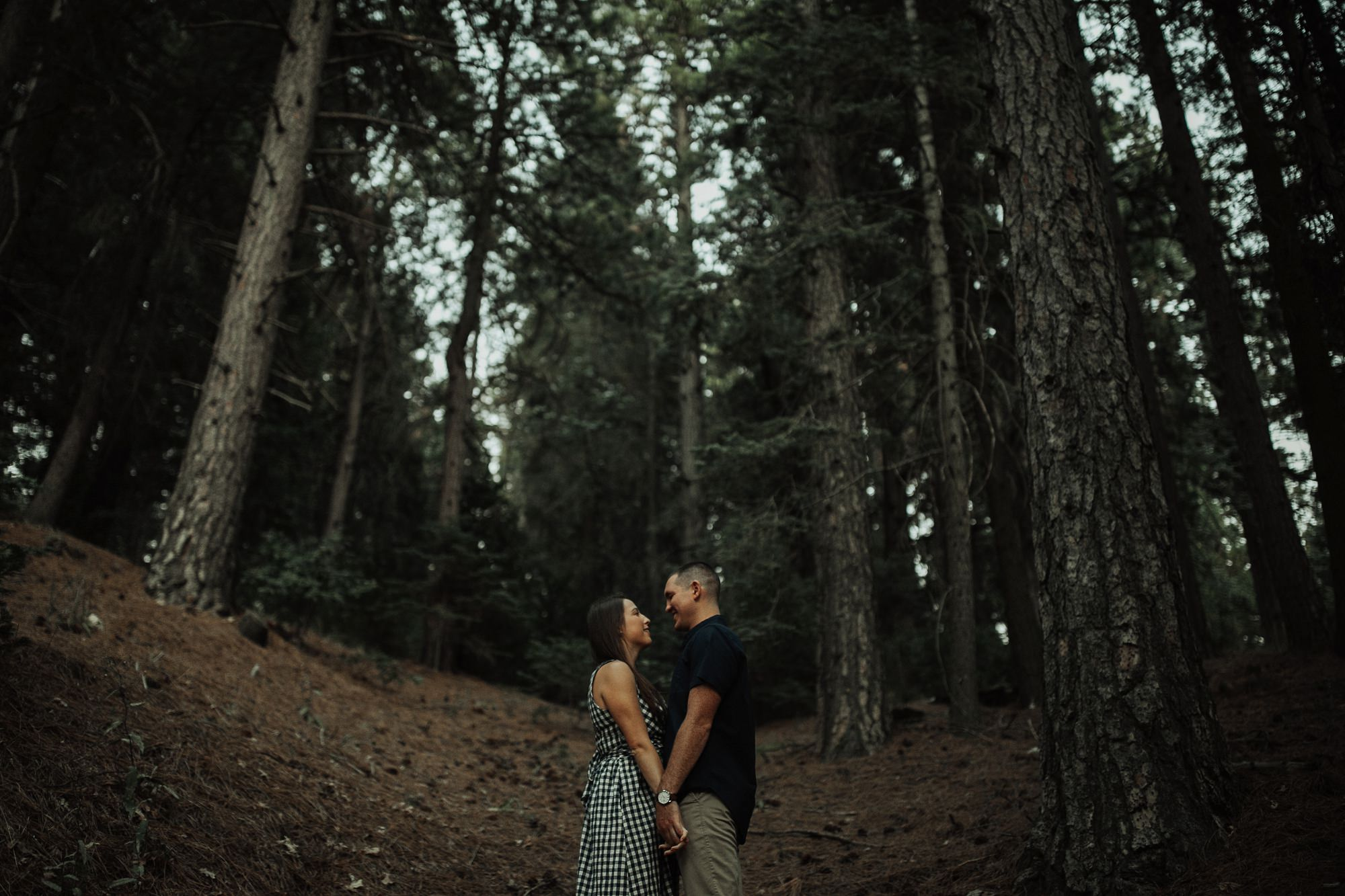 couple surrounded by trees in lake arrowhead