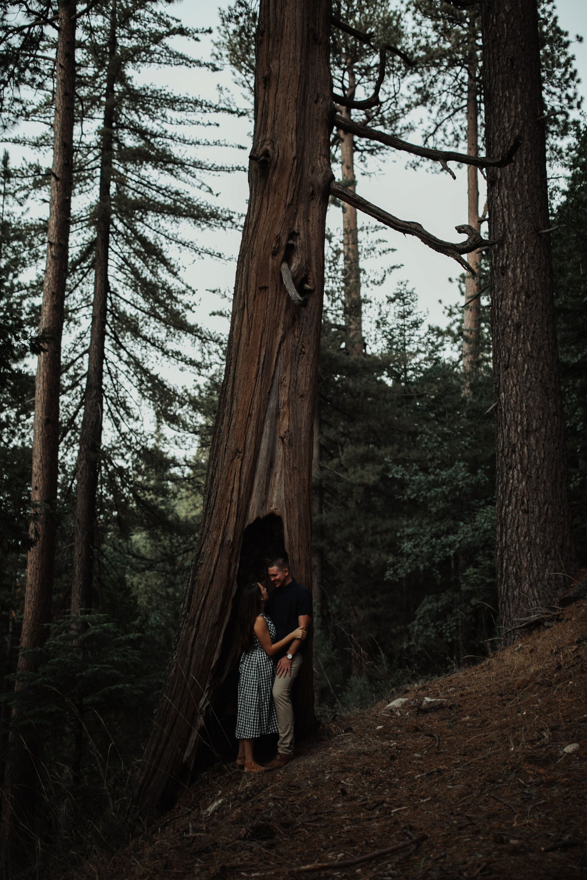 couple snuggling surrounded by trees in lake arrowhead